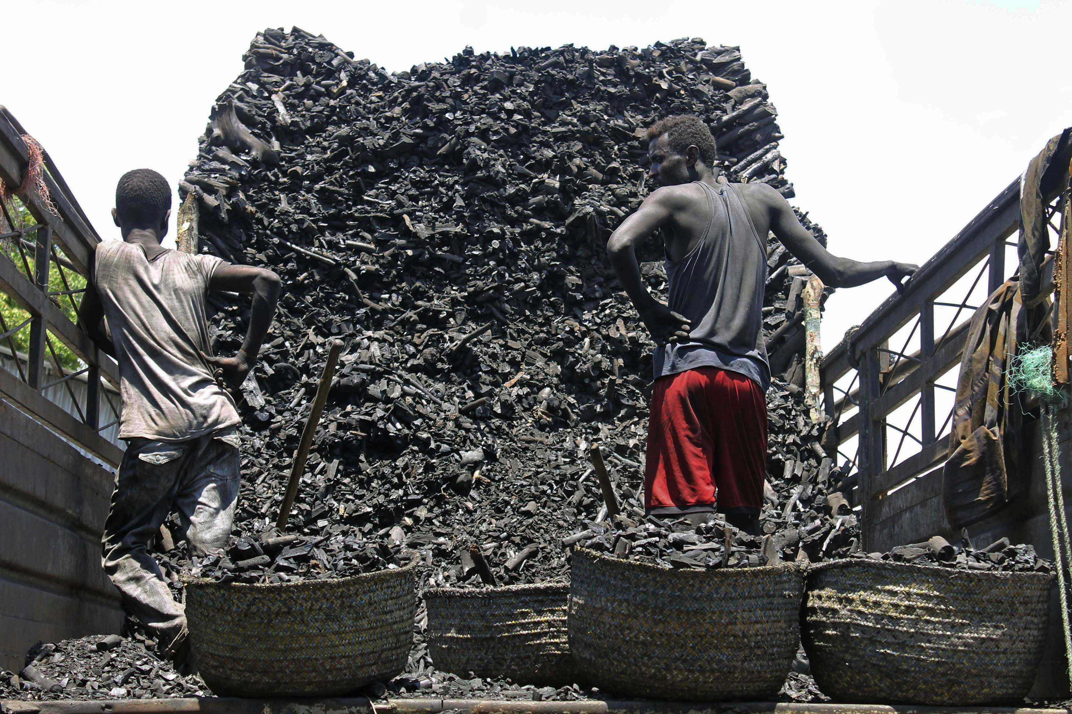 Environmentalists: Demand for Somali Charcoal Fueling Desertification, Drought