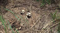 Human skulls suspected to belong to victims of a recent combat between government army and Kamuina Nsapu militia are seen on the roadside in Tshienke near Kananga, the capital of Kasai-central province of the Democratic Republic of Congo, March 12, 2...
