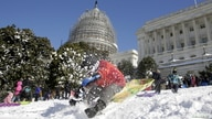 A boy crashes his sled on a hill at the U.S. Capitol after a major winter storm swept over Washington January 24, 2016.