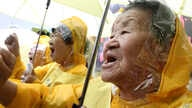 FILE - Former comfort women who served the Japanese Army as sexual slaves during World War II, at a rally before Korean Liberation Day.