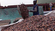 Ivory Coast Incumbent Government Rejects Cocoa Ban
