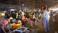 Vietnam's traditional wet markets sell pork, fish, produce and other food in bulk. (Ha Nguyen/VOA)