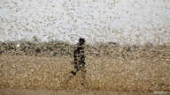 A man attempts to fend-off a swarm of desert locusts at a ranch near the town of Nanyuki in Laikipia county, Kenya, February 21…