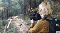 VOA Investigative reporter Veronica Balderas Iglesias films illegal logging at Monarch Butterfly Sanctuary in Mexico.