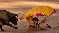 FILE - Spanish bullfighter Juan Leal falls in front a bull during a bullfight at the San Fermin Festival in Pamplona, northern Spain, July 14, 2018.