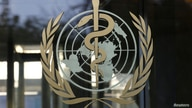 FILE PHOTO: A logo is pictured on the World Health Organization (WHO) headquarters in Geneva, Switzerland, November 22, 2017. …