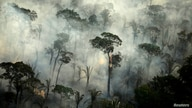 FILE PHOTO: Smoke billows from a fire in an area of the Amazon rainforest near Porto Velho, Rondonia State, Brazil, September…