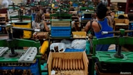 REFILE - CORRECTING MONTH  Recently rolled cigars are seen at the Corona tobacco factory in Havana, Cuba, July 3, 2019. REUTERS…