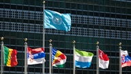 FILE - The U.N. flag and those of several member nations fly in front of the United Nations headquarters building in New York City, Sept. 24, 2015.