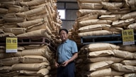 This photo taken on September 24, 2019, shows Chinese pig farmer Sun Dawu posing at a feed warehouse in Hebei, outside Beijing…