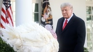 "U.S. President Donald Trump looks at the National Thanksgiving Turkey ""Corn"" during the 73rd annual presentation (and pardoning)"