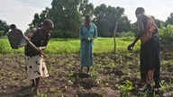 Embargoed until July 5, 2012 - 06:06 GMT / TO GO WITH AFP STORY BY AYMERIC VINCENOITFarmers work in a field on the outskirts…