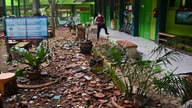 Pieces of roof tiles and other debris litter the ground at a school following an earthquake in Malang, East Java, Indonesia, April 10, 2021.