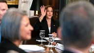 Vice President Kamala Harris waves goodbye to members of the media, while attending a meeting with business CEO's about…