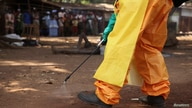 FILE PHOTO: A member of the French Red Cross disinfects the area around a motionless person suspected of carrying the Ebola…