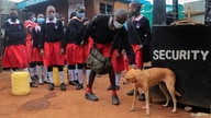 A boy strokes a dog before entering the Stara Rescue Centre and School during the reopening of schools, for the delayed academic year 2021, amid the novel coronavirus disease (COVID-19) pandemic, in Kibera slums of Nairobi, Kenya July 26, 2021.