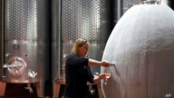 FILE - In this Wednesday, May 27, 2020 file photo, Cellar Master Elunda Basson works at the Steenberg vineyard in Constantia,…