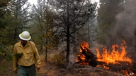 Ryan Berlin, a public information officer with the Bootleg Fire, walks past a burning log near the Northwest edge of the fire…