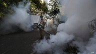 A Mumbai Municipal Corp. worker fumigates a street in Mumbai, India, Wednesday, June 10, 2020. While 2019 was the worst year on…
