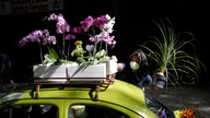 Roberta Machado arranges flowers on her 1969 VW beetle in the Copacabana neighborhood of Rio de Janeiro, Brazil, Wednesday, Oct…