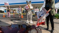 Members of People for the Ethical Treatment of Animals hold a demonstration with fake blood outside an ExxonMobil gas station…