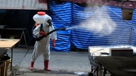 A worker sprays disinfectant as a precaution against the coronavirus at Klong Toey market in Bangkok, Thailand, Friday, Jan. 15…
