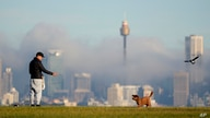 A man gestures to his dog as fog drifts through the buildings in Sydney's central business district, Australia, Friday, June 11…