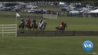 Virginia Steeplechase Gold Cup Horse Races Go Virtual