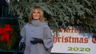 First lady Melania Trump receives delivery of White House Christmas Tree at the White House in Washington