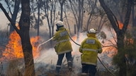 Firemen put out bushfire flames in Red Gully, Western Australia