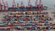FILE PHOTO: Shipping containers are unloaded from a ship at a container terminal at the Port of Long Beach-Port of Los Angeles complex, amid the coronavirus disease (COVID-19) pandemic, in Los Angeles