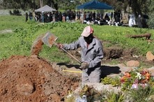 A gravedigger works in the COVID-19 section of the Maitland Cemetary in Cape Town, South Africa, Wednesday, July 15, 2020 as a…