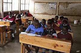 Experts Tackling Education in Africa
