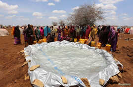 Internally displaced Somali women gather to collect water from a plastic pan after fleeing from drought stricken regions near a makeshift camp in Baidoa, west of Somalia's capital Mogadishu, March 26, 2017.