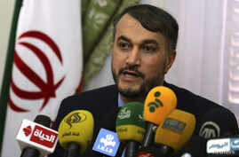 Hossein Amir-Abdollahian, Iran's envoy to the Organization of Islamic Cooperation (OIC), speaks during a news conference about the new political relations between Iran and Egypt after the newly elected Egyptian President Abdel Fattah al-Sissi was swo