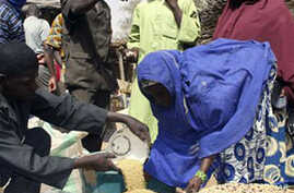 Hunger Expected to Continue in Niger Despite Good Rains