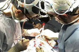 Study: Epilepsy Surgery Is Effective