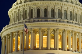 The United States Capitol Dome is seen before dawn in Washington, March 22, 2013.