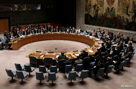 The United Nations Security Council votes on a resolution to ban the supply of helicopters to the Syrian government and to blacklist Syrian military commanders over accusations of toxic gas attacks at U.N. headquarters in New York City, Feb. 28, 2017