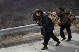 In this Feb. 19, 2016, photo, North Korean women carry firewood as they walk along a highway in Sinpyong county in North Hwanghae province, North Korea.