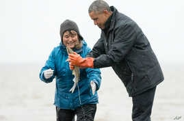 President Barack Obama reacts as a fish he is holding releases milt, the sperm-containing fluid of a male fish, while visiting with Commercial and Subsistence Fisher Kim Williams on Kanakanak Beach, Sept. 2, 2015, in Dillingham, Alaska.