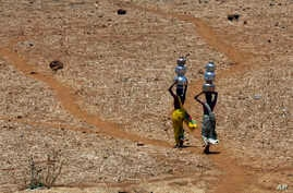 Indian women walk home after collecting drinking water from a well at Mengal Pada in Thane district in Maharashtra state, May 4, 2016.