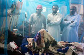 Family members stand next to a patient suffering from dengue fever, in an isolation ward at a local hospital in Rawalpindi, Pakistan, Oct 21, 2014.