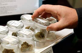 FILE - Different strains of marijuana are displayed for sale at the Warmland Centre, a medical marijuana dispensary in Mill Bay, British Columbia on Vancouver Island in Canada, Sept. 24, 2018.