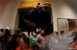 Museum attendees walk by the head of the newly named Patagotitan mayorum, a 122-foot (37.2 meter) titanosaur, at the American Museum of Natural History in New York, Aug. 9, 2017.