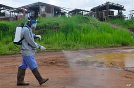 Ebola health workers spray disinfectant on a road near the home of a 17-year old boy that died from the Ebola virus on the outskirts of Monrovia, Liberia, Wednesday, July 1, 2015. Liberian officials confirmed a second Ebola case Wednesday in the same