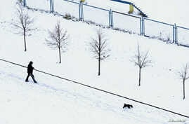 A man with a dog walks during the first snowfall in Minsk, Belarus, Nov. 2, 2016.