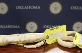 Pieces of carved ivory are on display at the state Capitol in Oklahoma City, following a news conference Tuesday, Feb. 10, 2015, held by Democratic state Rep. Mike Shelton, who is sponsoring a bill which he says bill is designed to help curb illegal