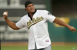 FILE - Former Oakland Athletics player Jose Canseco throws out the ceremonial first pitch prior to a baseball game against the Boston Red Sox in Oakland, Calif.