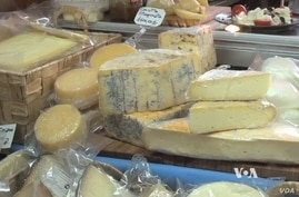 Artisan cheeses in Russia